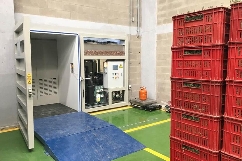 Vacuümkamer voor 1 pallet met kruiden bij een kruidenexporteur.